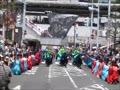 2014 船橋市民まつり3 よさこい3